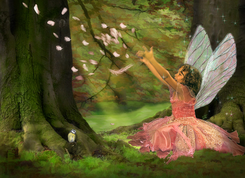 canstockphoto3250246_fairies_Anke